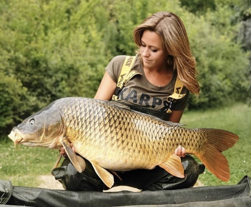 Shout out to Pat for this stunning Common!! ud83dudcaaud83cudffbud83cudfa3  @TheCARPbible   #Carp #C
