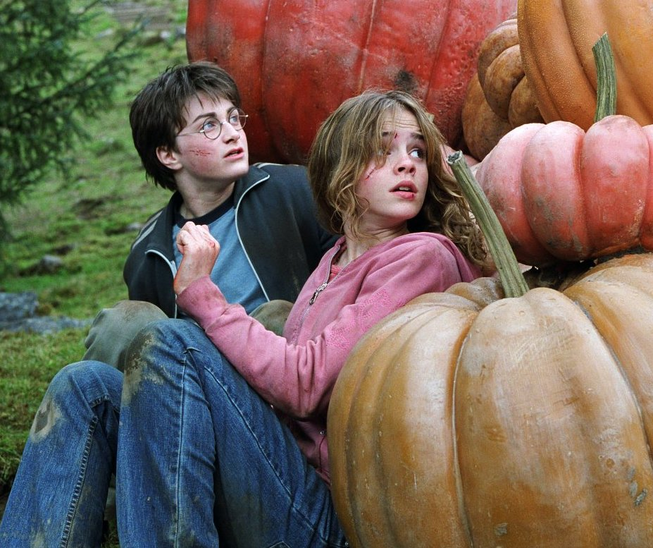 O filme que eu amo não tem nenhum defeito: Harry Potter e o Prisioneiro de Azkaban.