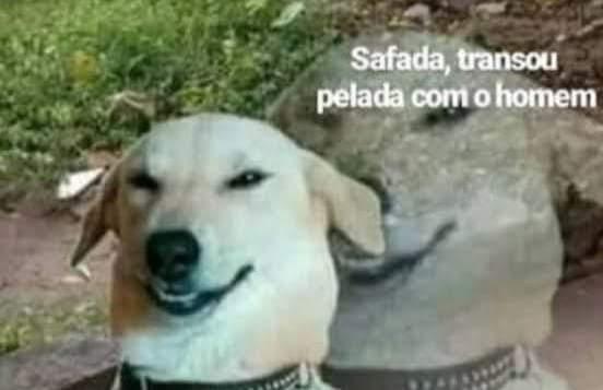 """O Léo dias contando as """"fofocas"""" da vida da anitta:"""