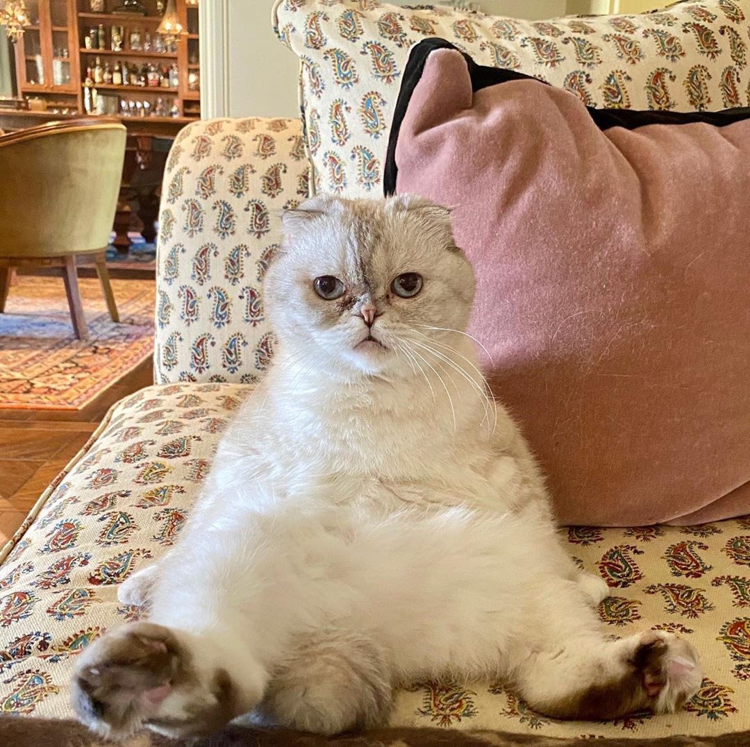 This is us waiting 3 more days for #TaylorSwiftCityOfLover 😹💕