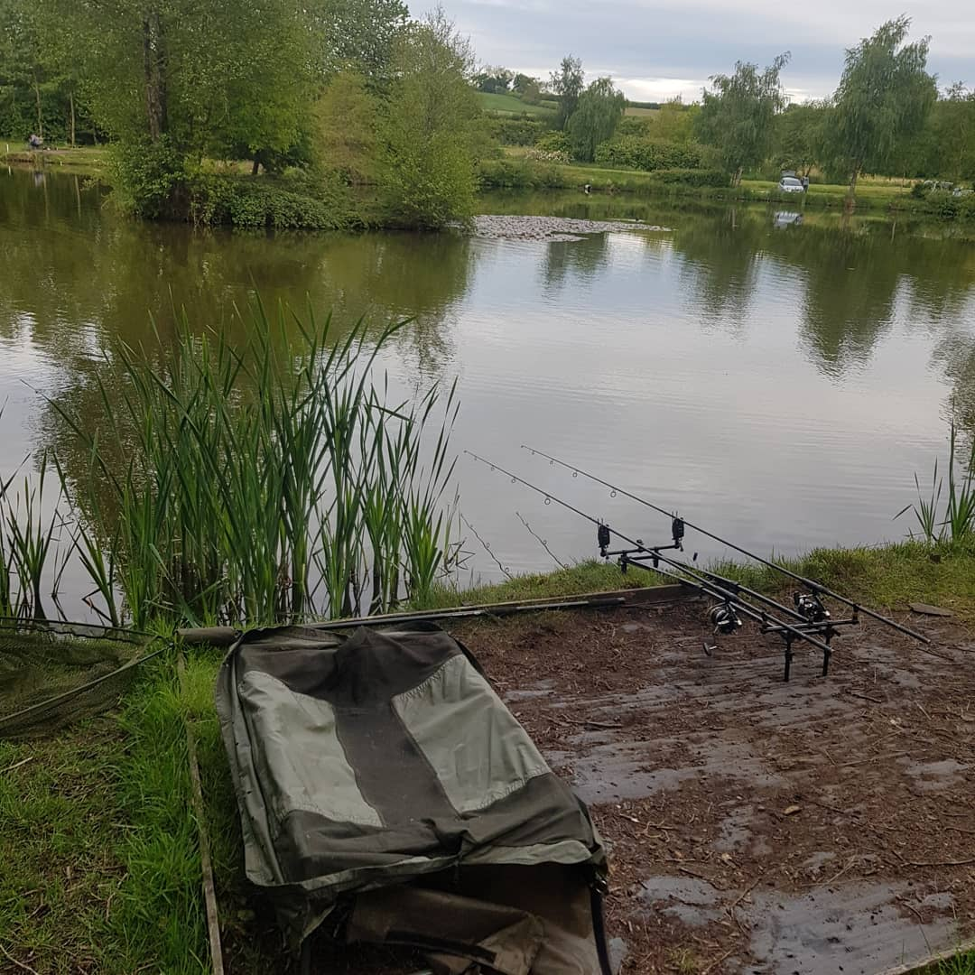 Finally a rod back in the <b>Water</b>...been a while...ud83eudd1eud83eudd1eud83cudfa3 #carpfishing