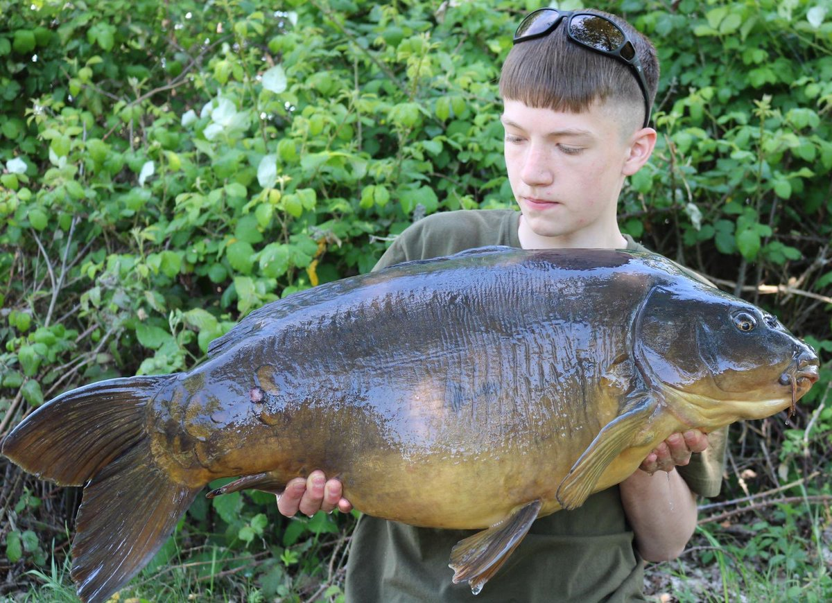 Early catch reports from opening weekend @stgeorgeslake Charlie Court straight in with a 36... #<b>B