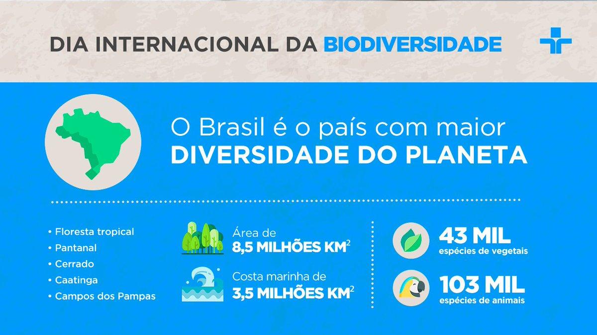 Hoje é o Dia Internacional da Biodiversidade! Você sabia que nosso país possui a maior do planeta? Aqui na #TVCultura mostramos um pouco disso no programa Repórter Eco, viva a natureza!