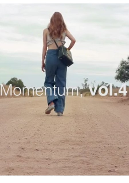 New Review : Momentum, Vol. 4