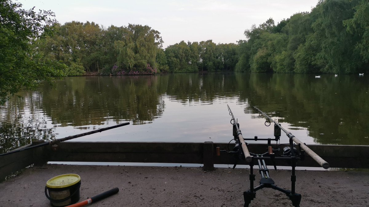 It's a nice evening to be an angler #carpfishing https://t.co/vqzVS3PVL2