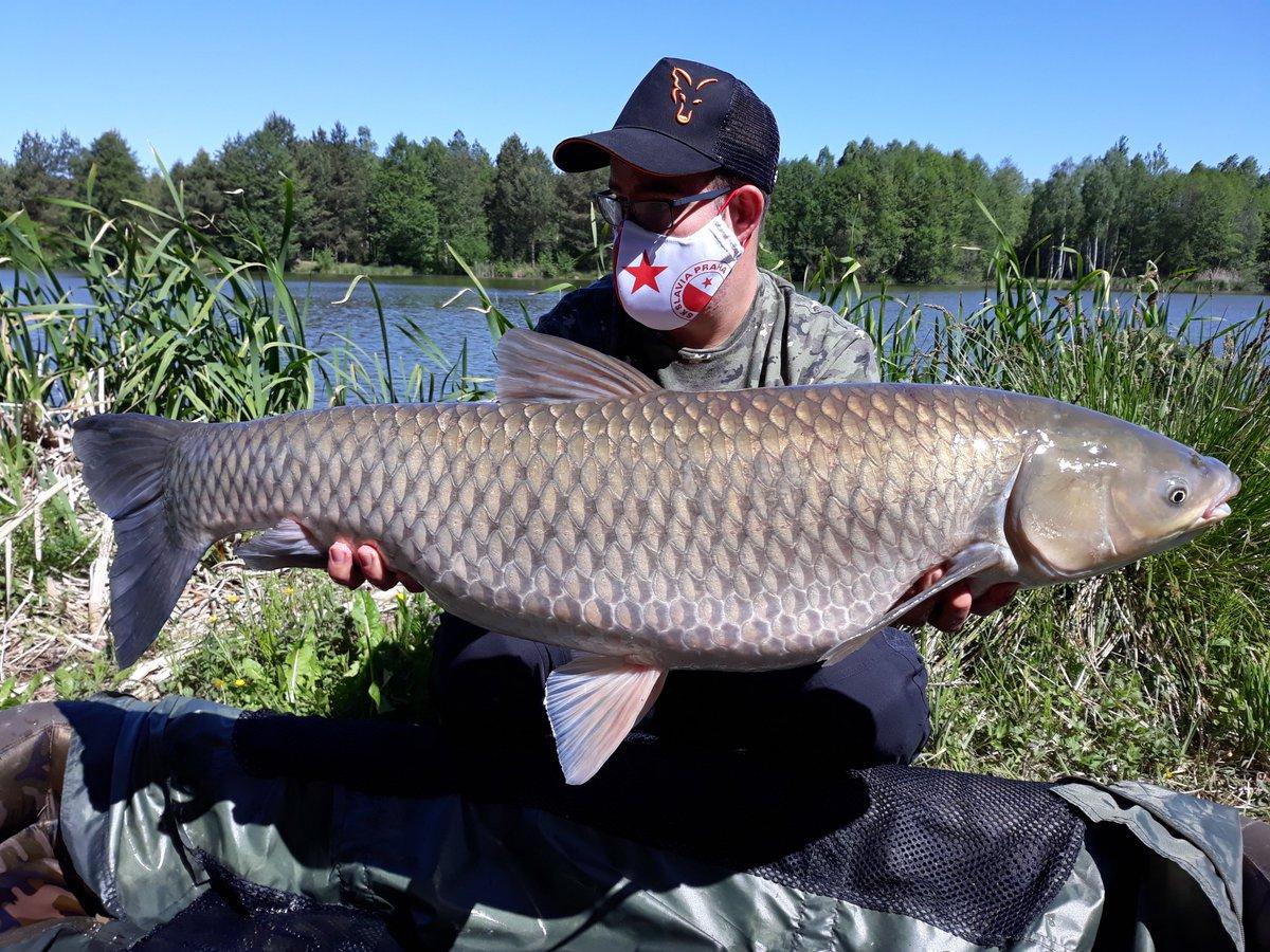Amazing #amur. 103cm, 13kg! #carpfishing #fishing #<b>Fishinglife</b> #fishingislife #fisherman #sla