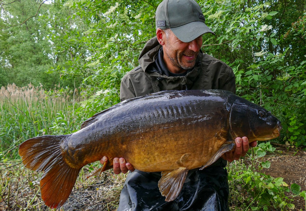 There's some stunning fish in Orchid. Another thirty-<b>Plus</b> on SLK & Avid end tackle 👌