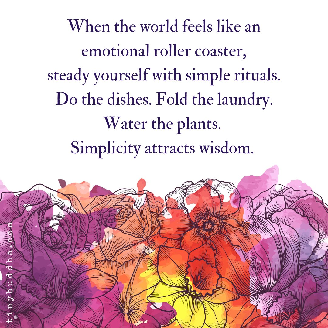 When the world feels like an emotional rollercoaster, steady yourself with simple rituals. Do the dishes. Fold the laundry. Water the plants. Simplicity attracts wisdom. https://t.co/wS0xbASBx4