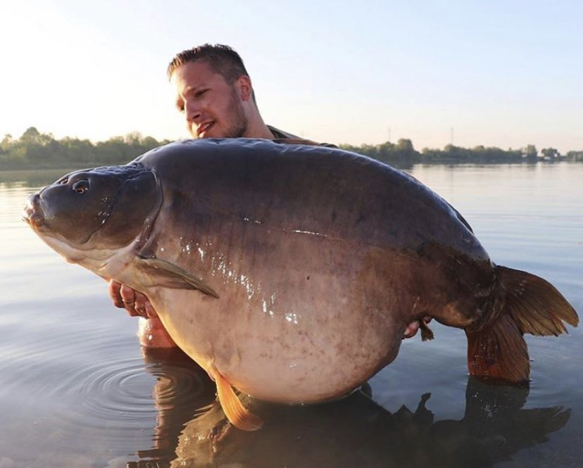 Big shout to Tim Garssler for this absolute chunk!! ud83dudcaaud83cudffbud83cudfa3  @TheCARPbible