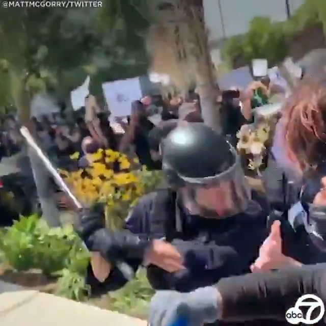 SHOCKING VIDEO: LAPD officers seen striking protesters with batons in Fairfax district confrontation
