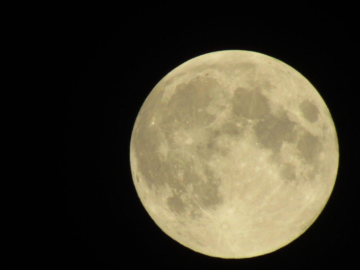 test ツイッターメディア - 満月1日前の、今日の、明るく美しい月、 横田めぐみさんのお父さんへ。  拉致被害者のみなさんに、 拉致被害者家族のみなさんに、 夜道でも明るい光が照らし続けますように。  皆、同じ月を観ています。 https://t.co/SVjfcrhtNG