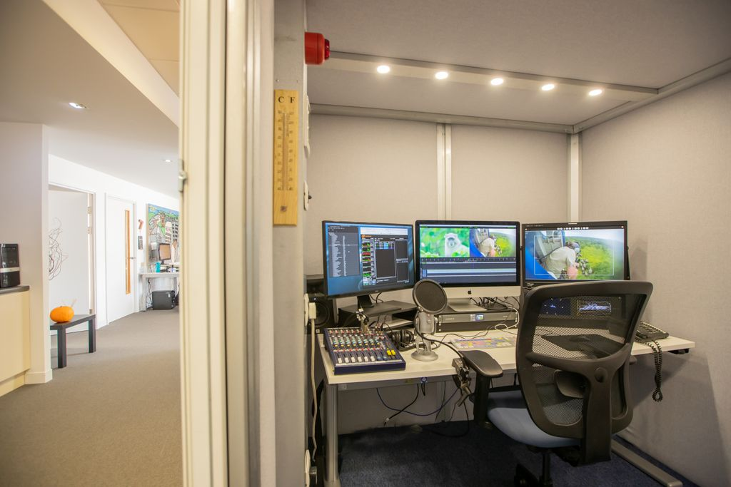 Job alert: We are looking for an experienced Edit #Producer to work on an exciting new commission for National Geographic Shark Fest. Application closing date: 27/09. More info & apply via @tvtalentmanager here: https://t.co/TRbWD8lVRT https://t.co/Rt479E6mgM