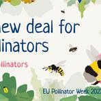 @polli_net | Semana dos Polinizadores da UE  📅27 a 30 de Setembro https://t.co/d2Sb6AEqVn https://t.co/1HodAMccnh