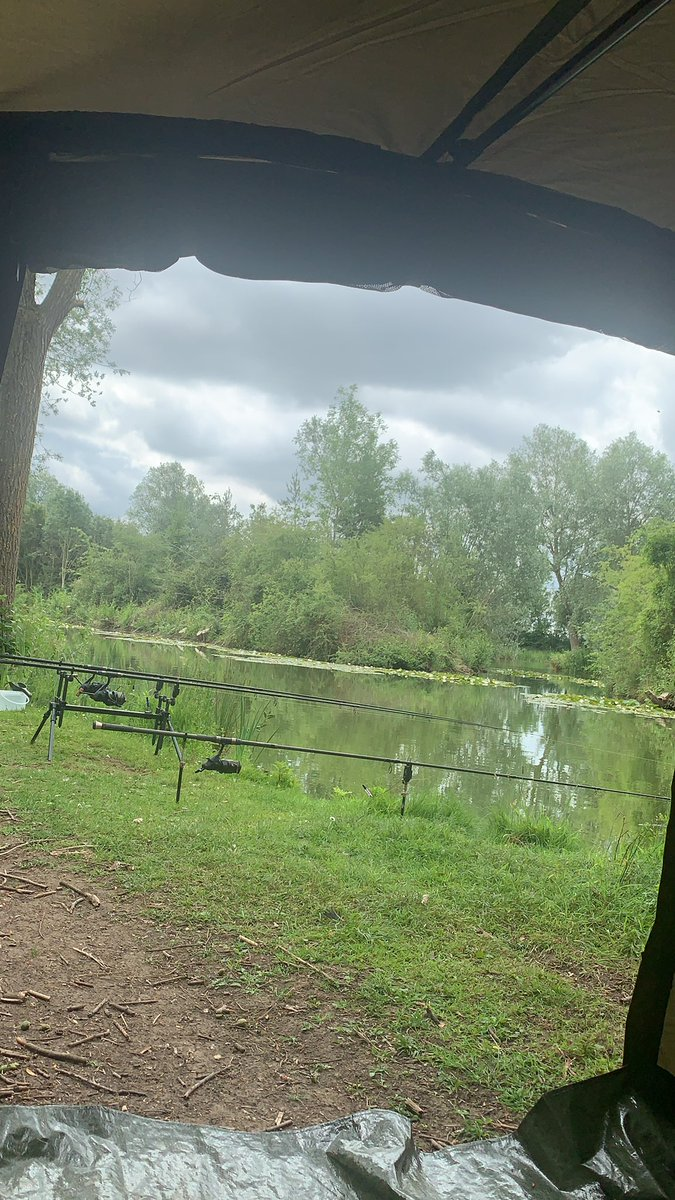 All set for the next 24 hours. Back at the Fennes in B<b>Rain</b>tree today #carpfishing #carp #angl