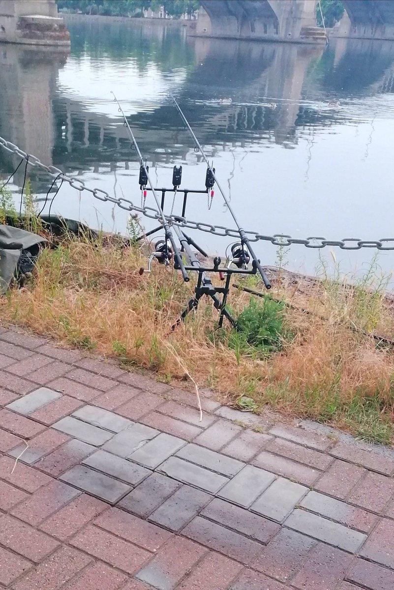 Quelques heures sur 'le bord de Meuse #<b>Carpe</b> #streetfishing #fdcbaits #carpfishing https://t.