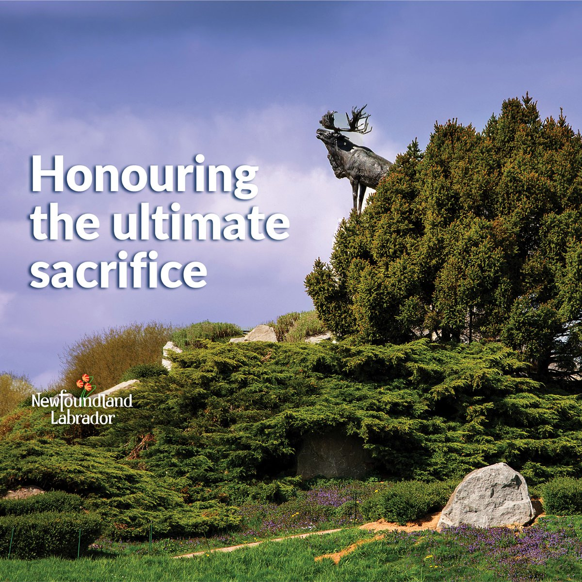 Today is #MemorialDay in our province. It is a significant day as we pay tribute to the brave Newfoundlanders who made the ultimate sacrifice at #BeaumontHamel in 1916. Learn more:    Flags are at half-mast from sunrise until noon. #LestWeForget #GovNL