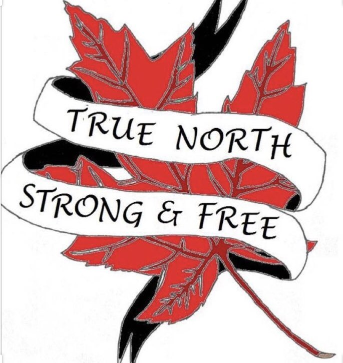 """test Twitter Media - Canada Day has a deeper meaning for me in 2020. The people of Manitoba have shown what """"True North Strong and Free"""" means. This years challenges are not over. Thank you for keeping our province safe and healthy. Have a great Canada Day🇨🇦 #mbpoli https://t.co/92Xnfl6NAX"""
