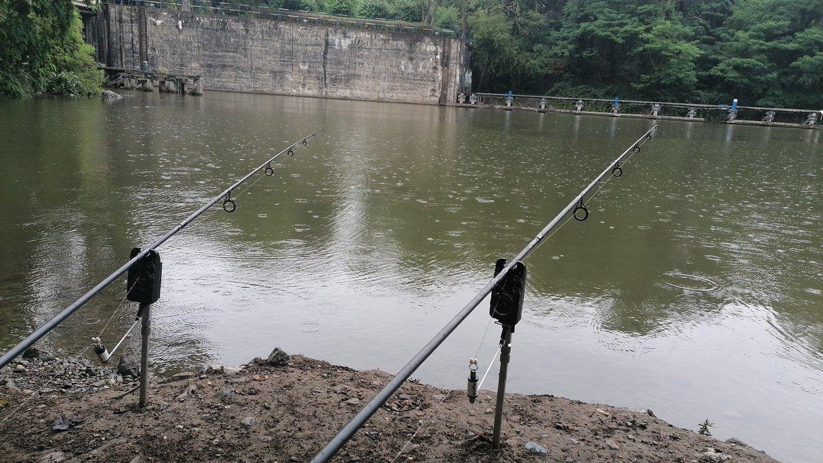 En mode pêche rapide rivière #fdcbaits #carpfishing #carp #onycroit #pasbellelavie #carphunter #<b