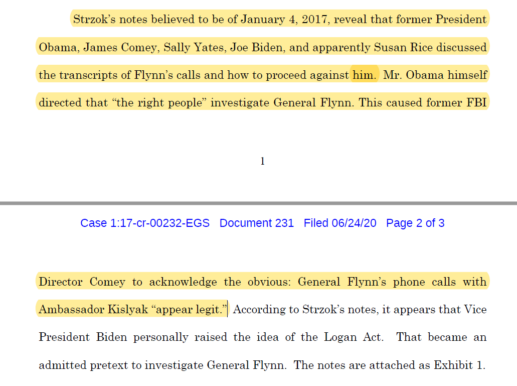 """🚨Peter Strzok notes from 1/4/17 released in Flynn case:  Discussion among Obama, Comey, Yates, Biden, and Susan Rice.  Biden: """"Logan Act""""  Obama: """"Have the right people on"""" Flynn case.  Comey: The Flynn/Kislyak calls """"appear legit."""""""