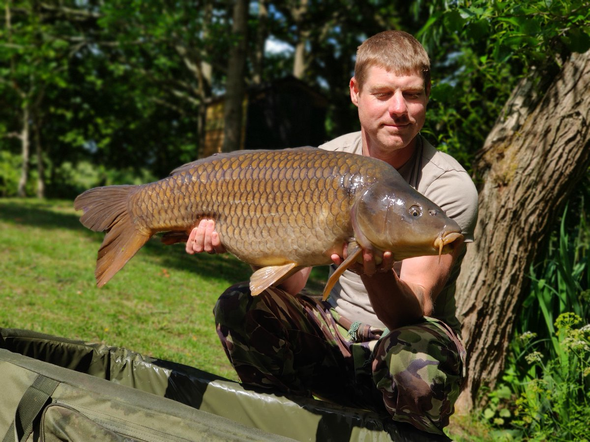 21lb of pure power. Caught off the top on a <b>Free</b>lined floating pellet. #carpfishing https://t