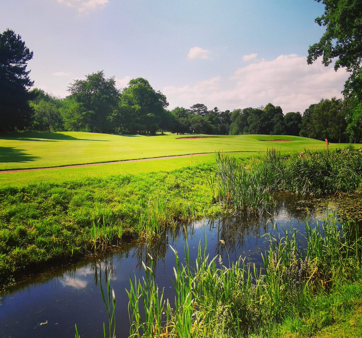 test Twitter Media - #HOT 😍⛳  And the weather is pretty warm too 😉  #pictureperfect #perfection #landscape #hottest #hotter #water #pond #golfcourse #golfing #golfers #waterhazard #sunny #warm #summer @MidlandsGolfer @robrockgolftour @IPGCourseupdate https://t.co/5s1QaalHNg