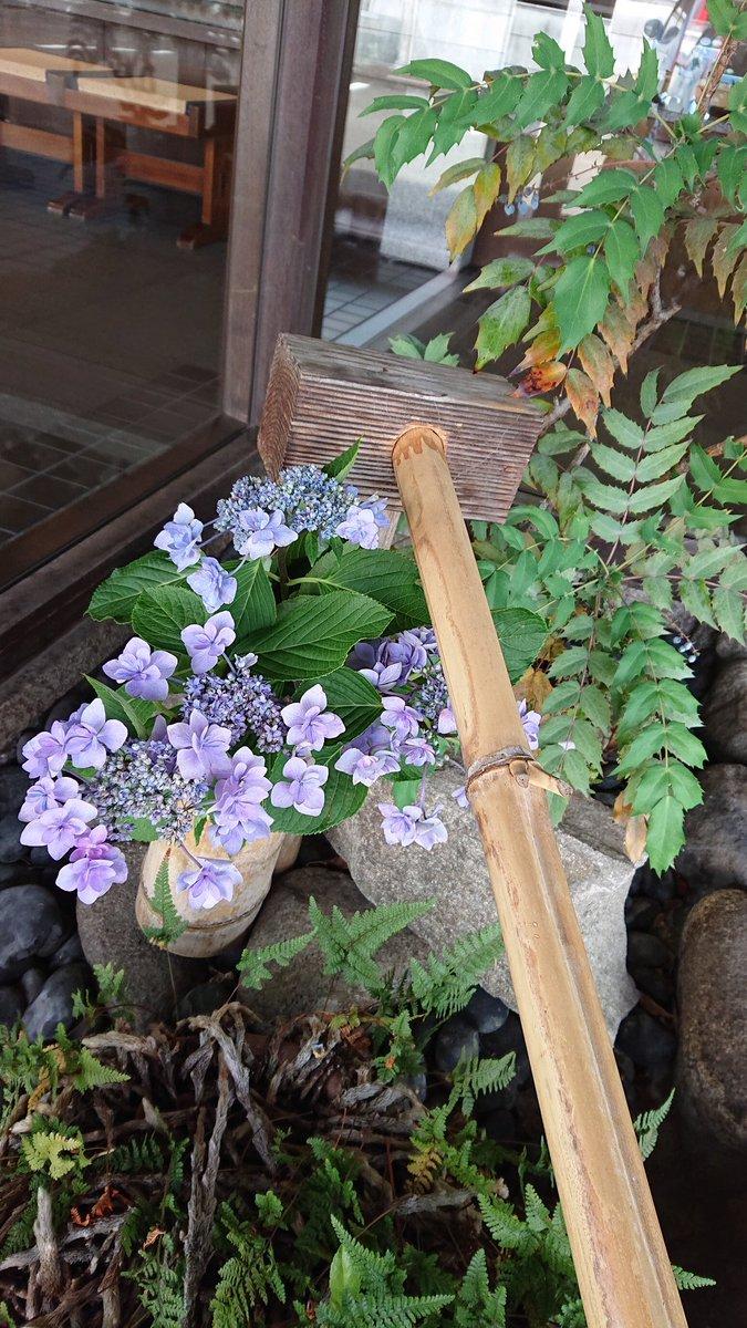 test ツイッターメディア - 山田屋まんじゅうさん。今日もお花がきれいです。次にスタンプがたまるから、引き換えも楽しみです。おまんじゅうは今からの季節、冷やして食べると美味しいです。 https://t.co/ZhjSyN3KQv