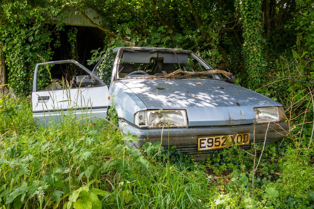 test Twitter Media - Nature is slowly ravaging a once-loved Citreon BX; now abandoned and unloved. #abandoned #vintagecar #oldcars #forgotten #car #abandonedplaces #urbex #classicars #devon #photography https://t.co/LE4pwb4ll8