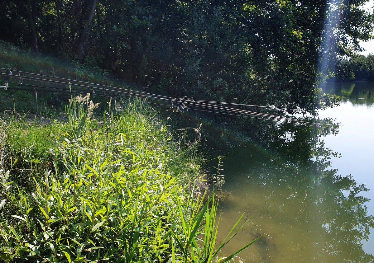 Waiting for ud83dudc1f. #Fishing #carpfishing #ribolov https://t.co/j5kxQiGHgb