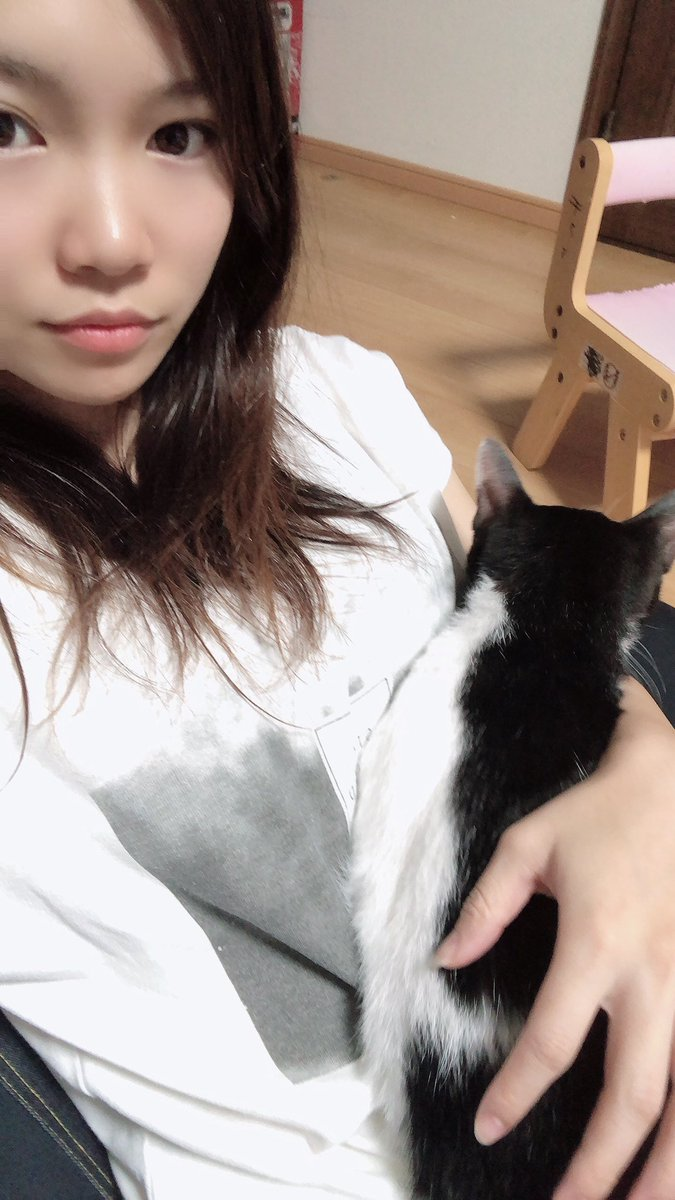 甘えっ子ターイム❤  #癒し #猫好きさんと繋がりたい  #ダイエット