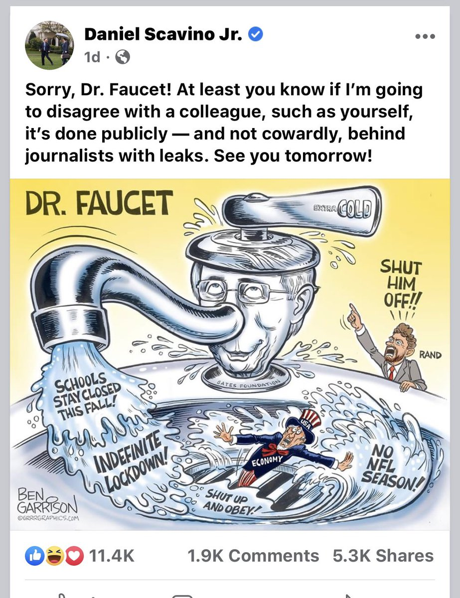 White House Deputy Chief of Staff for Communications and Director of Social Media posts cartoon and message on FB attacking the nation's leading infectious disease expert for telling the truth about this deadly pandemic.