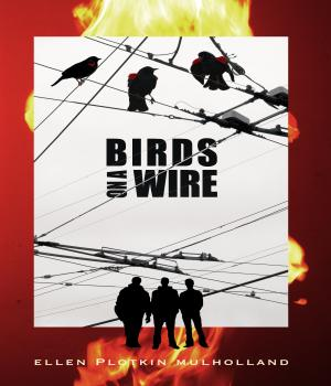 Check it OUT Birds on a Wire by Ellen Plotkin Mulholland Read the First Chapter for #free  #asmsg #ian1 #iartg #spub #ibook #apple #kindle #kobo #author #spwas