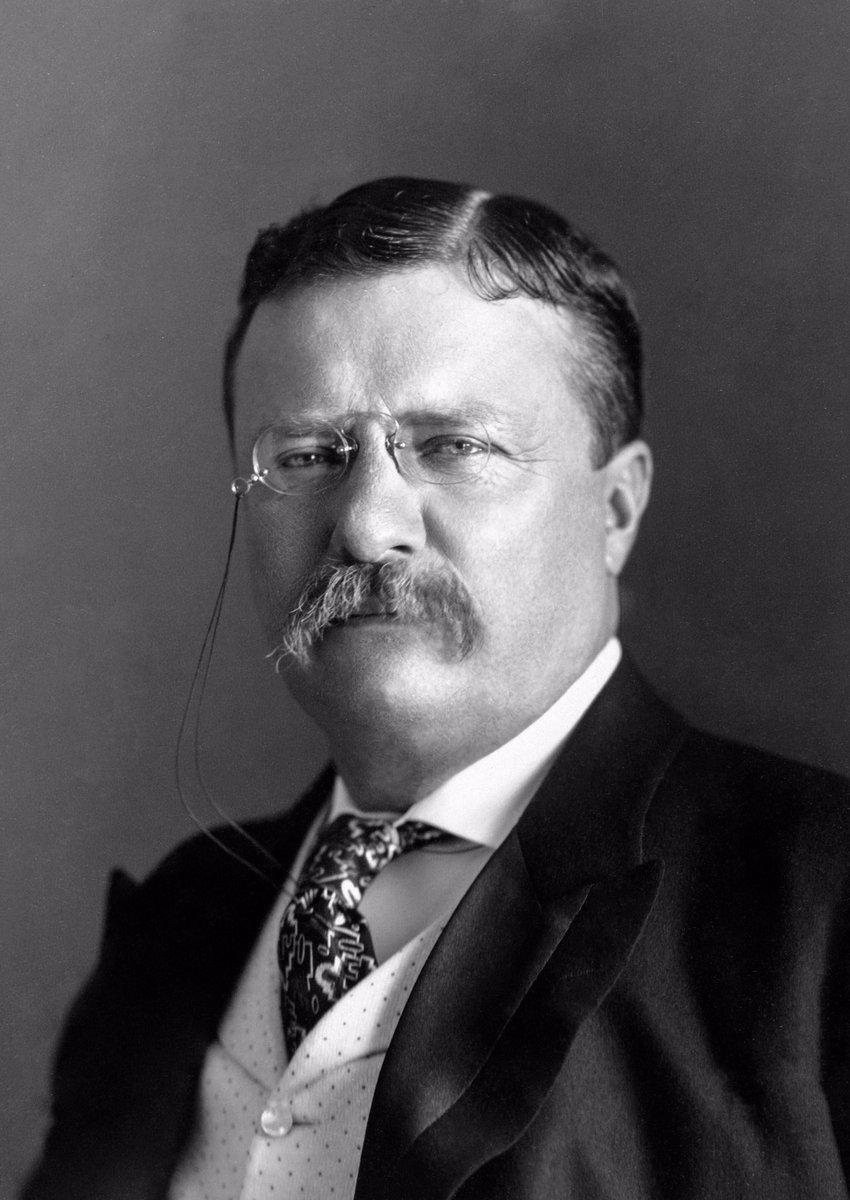 """Teddy Roosevelt on the 4th of July:   """"We have fallen heirs to the most glorious heritage a people ever received, and each one must do his part if we wish to show that the nation is worthy of its good fortune,"""" #IndependenceDay"""