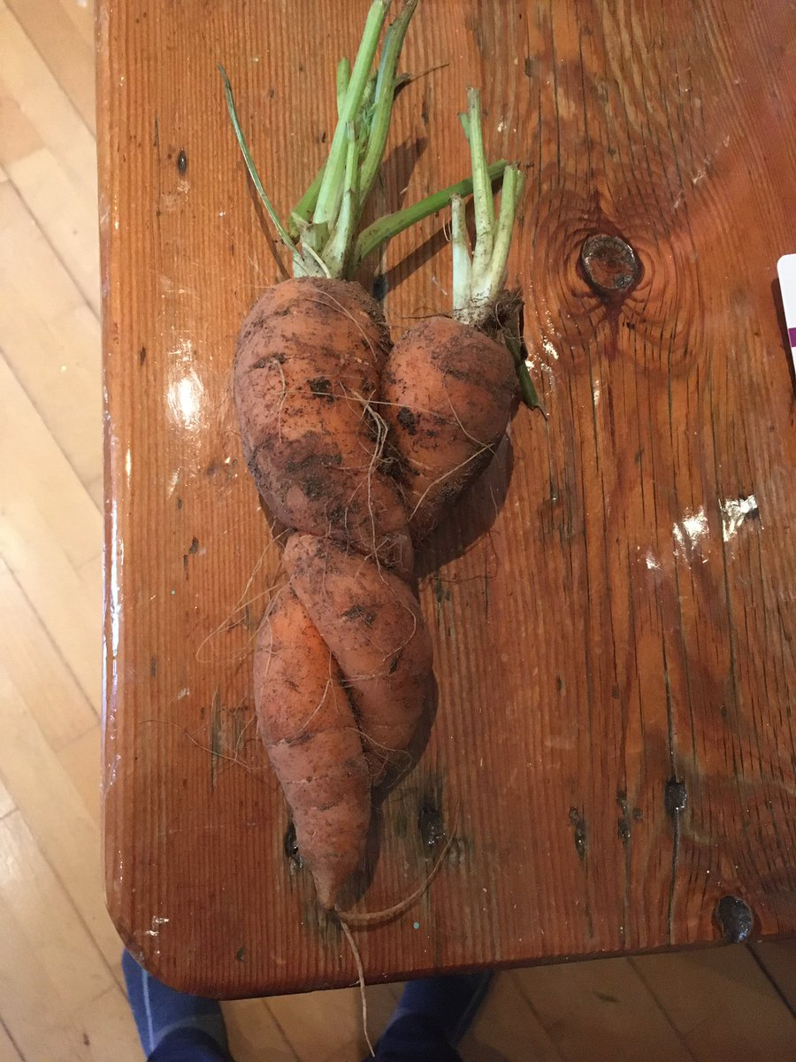 Perhaps we can all learn something from these dirty carrots. #FarmShopsLove