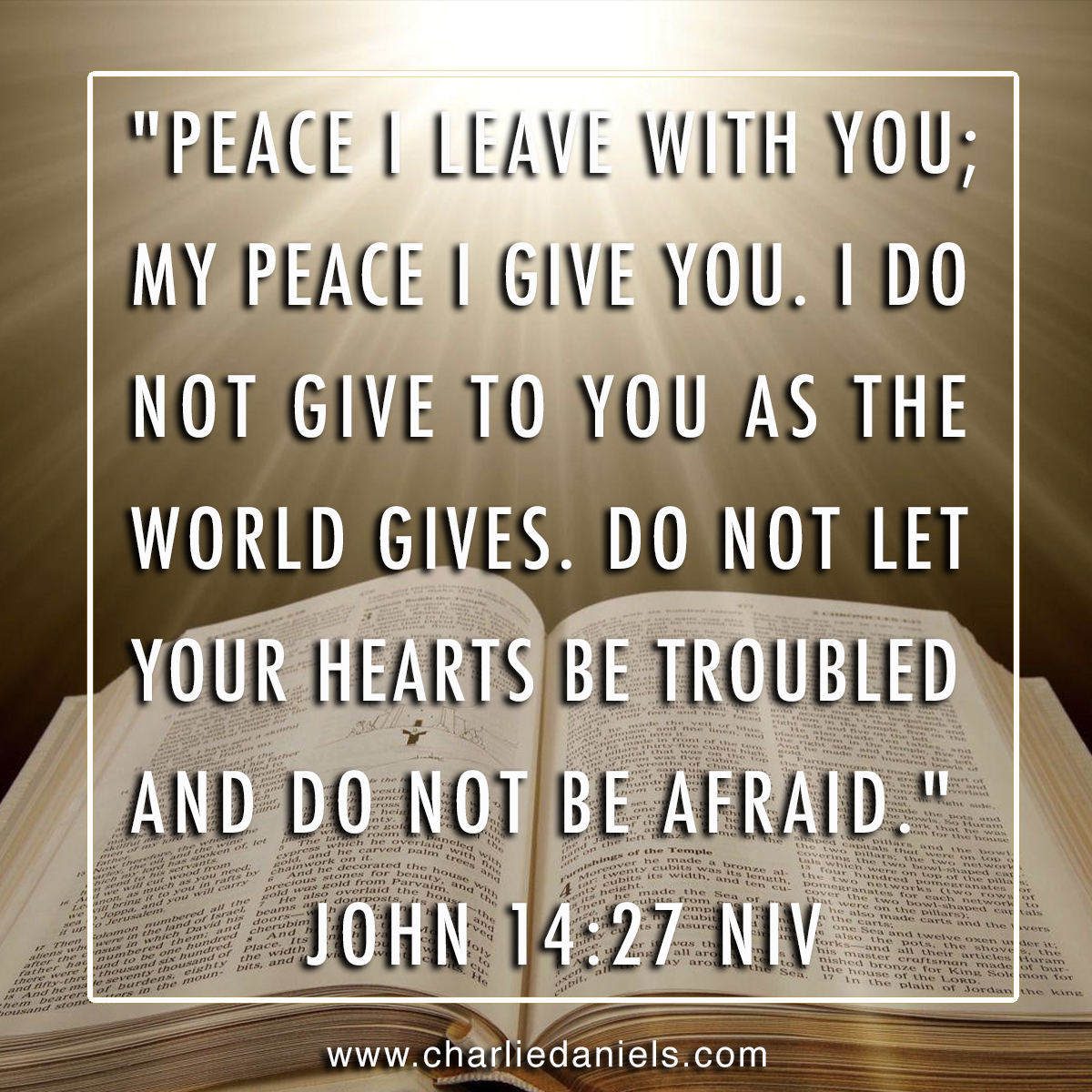 """Peace I leave with you; my peace I give you. I do not give to you as the world gives. Do not let your hearts be troubled and do not be afraid."""" - John 14:27 NIV"""