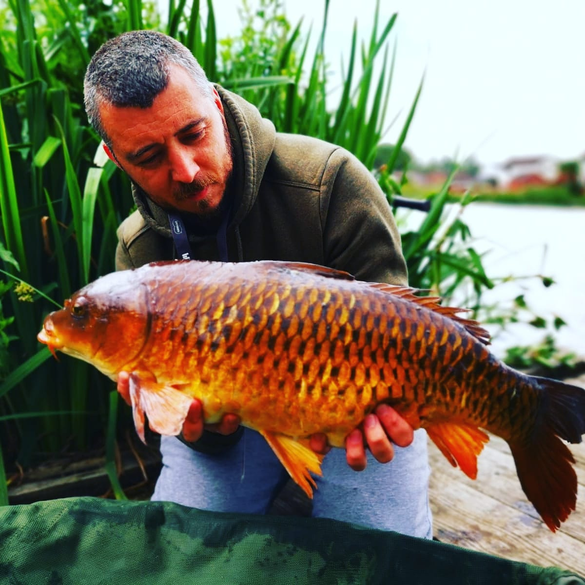 Beautiful fish 🎣👍#<b>Carp</b>fishing #ccmorebaits #fishingviews #fishing https://t.co/ei7k6662