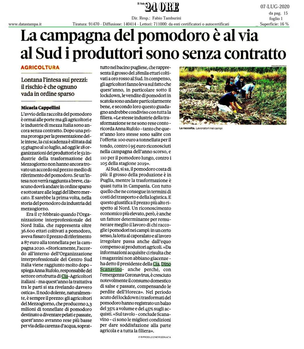 Sul @sole24ore  l'allarme #Cia sulla campagna 2020 del #pomodoro da industria al #CentroSud❗️ Il tempo è scaduto, arrivare subito a un accordo sul #prezzo a beneficio degli #agricoltori e di tutta la #filiera 👨🌾
