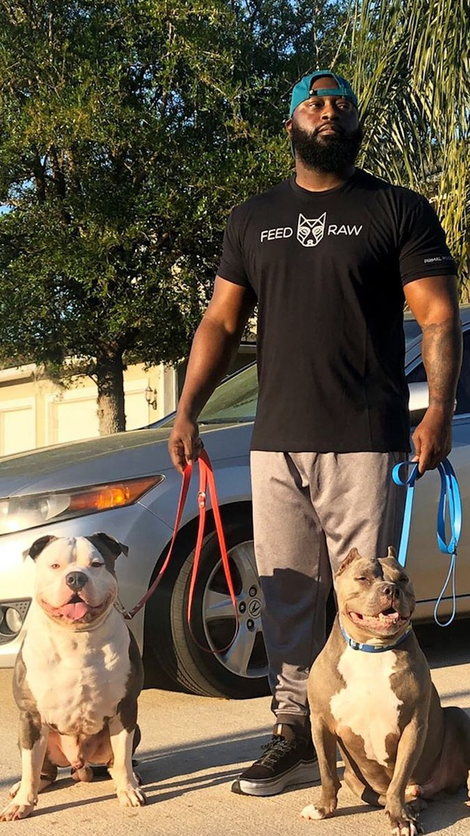 These two rescue pitties are velcro dogs with their veteran dad ❤️️