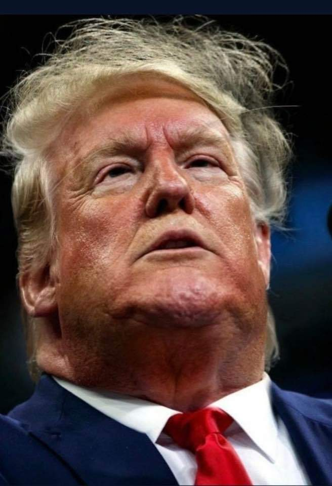 I'm just waiting for his face to start splitting apart like that woman from the movie Total Recall. I'm guessing it will reveal nothing. However, I wouldn't be surprised if it revealed another famous Austrian born actor. #TrumpIsUnwell #biglynutz
