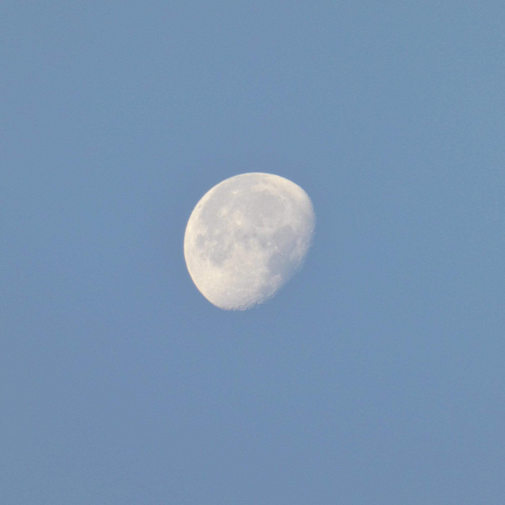 #FelizJueves Amanece en #Portsaplaya Alboraya (Valencia) #9Jul #Sol #Luna #moonsun #StormHour #ThePhotoHour @El_Universo_Hoy @AstroAventura https://t.co/CwcXFdyIVV