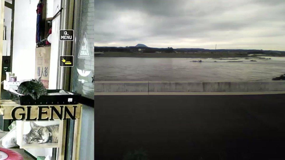 test ツイッターメディア - 昨日ボーイ グッドモーニングおちりボーイ✨もふもふ(^^) 歯をむにぃ〜ボーイ✨気付かずそのままスャァ(^^) シッポ出しちゃったボーイ✨可愛い😍 何にゃ?ボーイ✨ねぼすけだね! 色々な地域で雨の被害が凄くて心配です。皆様お気をつけて。 #グレ通 https://t.co/GpdOB3T3rL