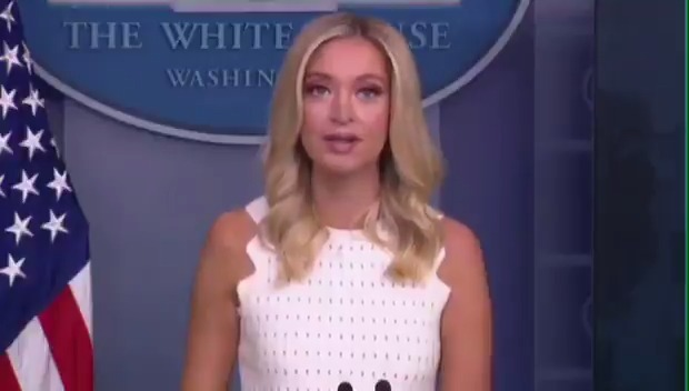 """Press Sec. Kayleigh McEnany: """"If Democrats have their way, children will not have access to schools at all."""""""