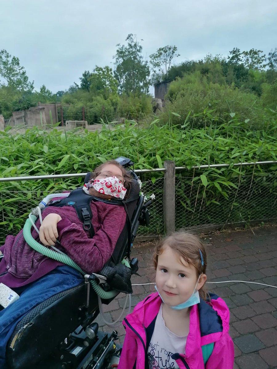 test Twitter Media - Habe mich heute Abend mit einer Assistentin und ihrer lieben Tochter mal wieder nach draußen getraut. 😍  Lichterveranstaltung und Snackangebot im Zoo Münster.  Inklusive eines vorgezogenen Geburtstagsgeschenk von mir für Sophia. 🐺 https://t.co/Ac3hSLRfec