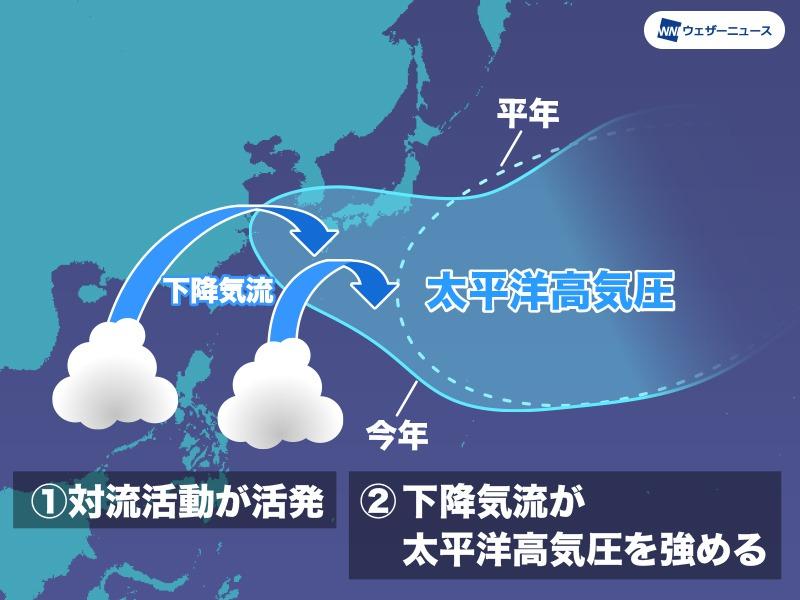 test ツイッターメディア - 気象庁は今日10日(金)、最新のエルニーニョ監視速報を発表。夏から秋にかけて平常の状態が続く可能性が高いものの、ラニーニャ現象に移行する可能性もあります。その場合、台風の発生位置は、秋を中心に平年よりも西寄りになる予想です。 https://t.co/24cDfje5eN https://t.co/w6eU5FWbcX