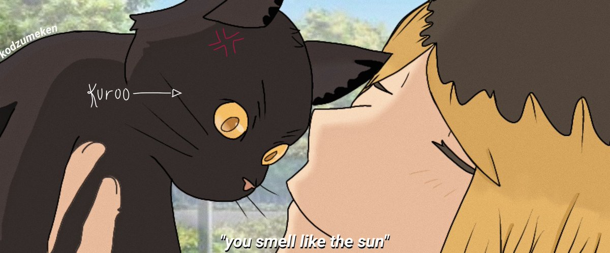 kuroo doesnt think smelling like the sun is a compliment  #kuroken #haikyuu #fanart