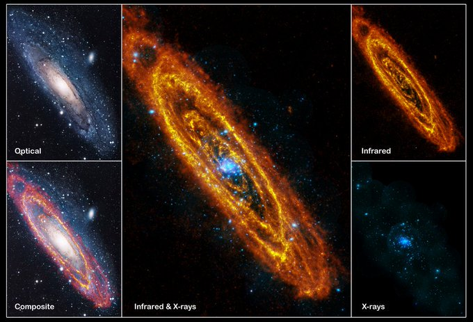 Our Milky Way Galaxy's closest major galactic neighbor, the Andromeda galaxy, certainly has a familiar shape to astronomers and stargazers. But these views of M31 in different wavelenghts are just adding charme to our closest island universe