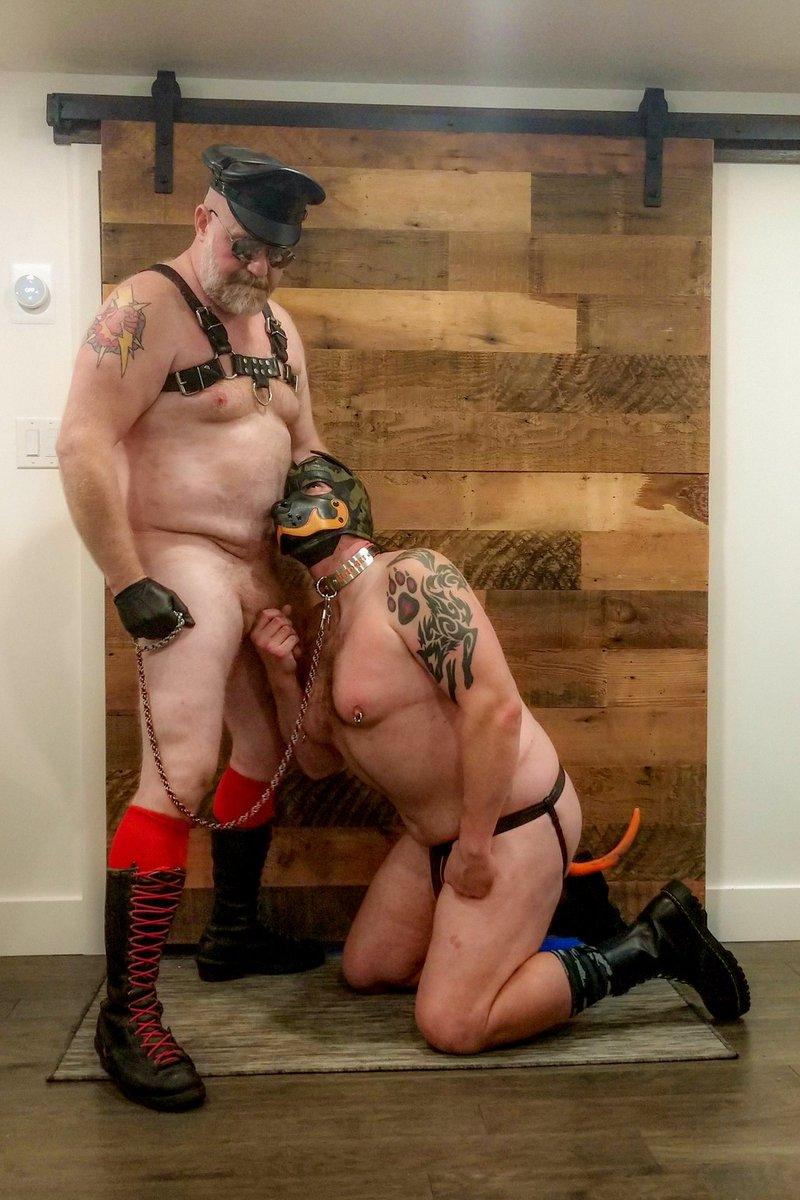 Enjoying Daddy @SteveEllisXXX's bone! Collar by @cockeyekink  . . . . #me #humanpuppy #humanpup #pupplay #puppyplay #pupgadget #alphagadget #alphapup #alphapupgadget #cockeyekink