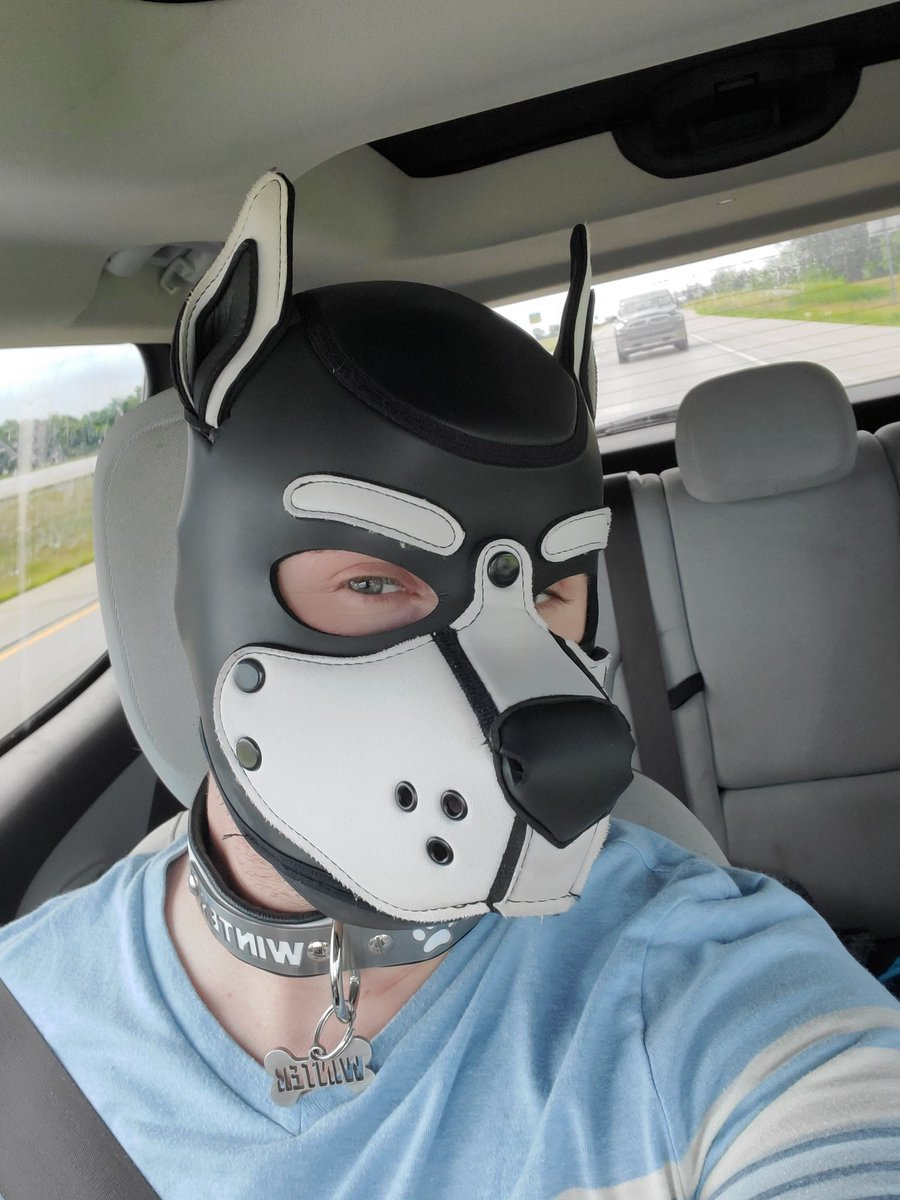 #puppyplay #pupwinterkc #midnighthowlkc #leather #gaypup #gay #bdsm #bdsmpuppy