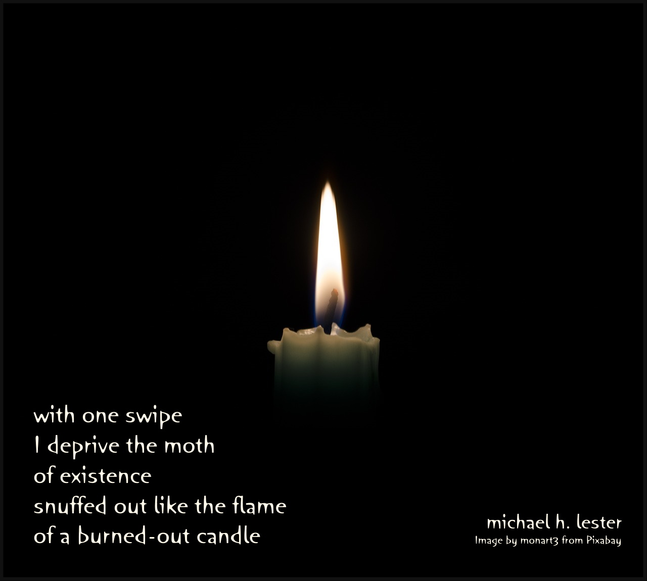 #tanka #kyoka #haiku #senryu #haiga #micropoetry #poetry  with one swipe I deprive the moth of existence snuffed out like the flame of a burned-out candle https://t.co/c5BEZu3nMY