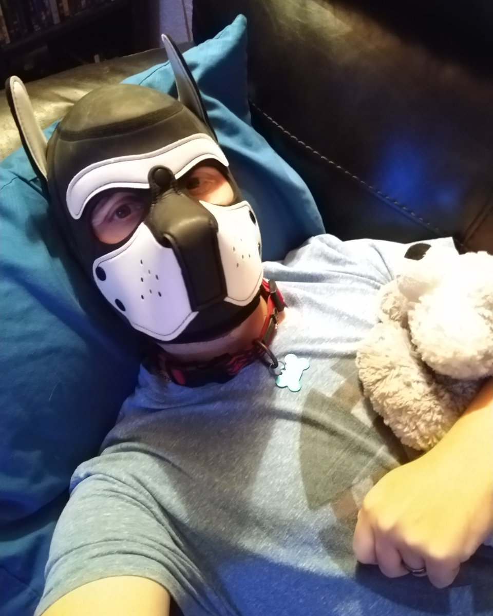 Required snugs. #humanpup