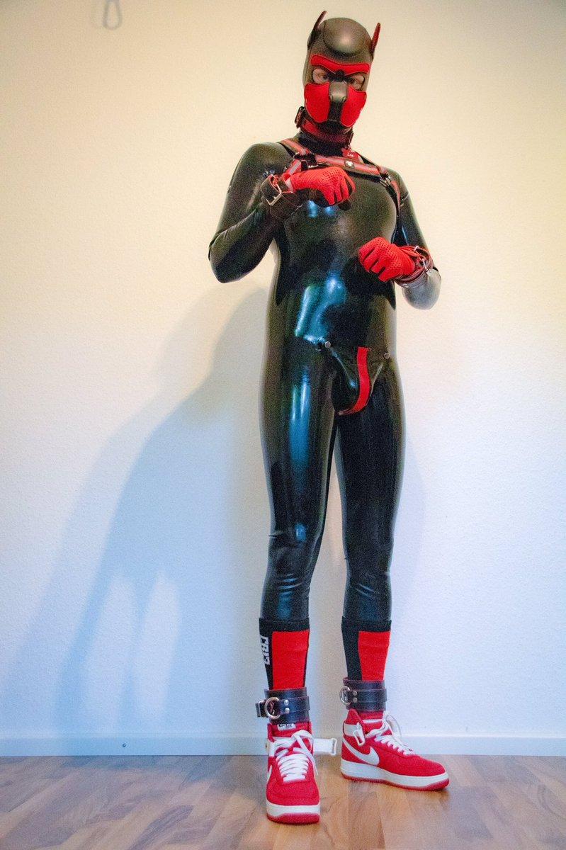 Hey 🐶 let's Play 🐕  #rubber #rubbergay #rubbergimp #rubberfetish #rubberboy #rubbergimpsuit #blackstylelatex #gayrubber #gaypuppy #pupplay #puppyplay #petplay #pupfetish #humanpet #gay #gayboy #gaytwitter #pupplaygear #bondage #rubberpuppy #kinky #gaykink
